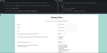 The Survey Form, with a central white background and better styling - comment boxes line up now!